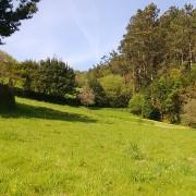 landscape-646396_640