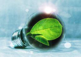 light-bulb-2632075_960_720