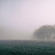 fog-828779_640